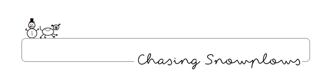 da248978ec Chasing Snowplows – Mainer